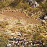 В Западной Австралии ищут автора надписи «SOS»