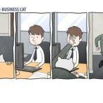 Если бы ваш босс был бы котом