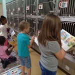Американские школьники почитали книги животными из приюта