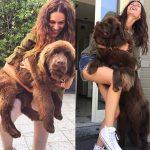 Собаки невероятно больших размеров