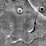 NASA опубликовало фото лица на Марсе