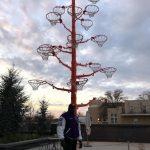 Шакли О'Нил продемонстрировал «выращенное» им дерево из оторванных баскетбольных колец