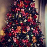 Почему елка является символом Нового года?