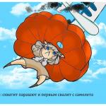 12 забавных комиксов, как знаки зодиака вели бы себя при крушении самолета