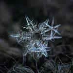 30 идеальных кадров: вот как в действительности выглядят снежинки!