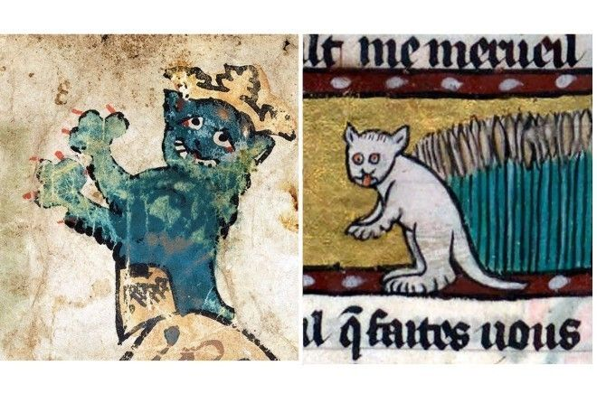 Может раньше коты каки-то другие были? :-)