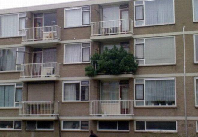 Балкон в экостиле